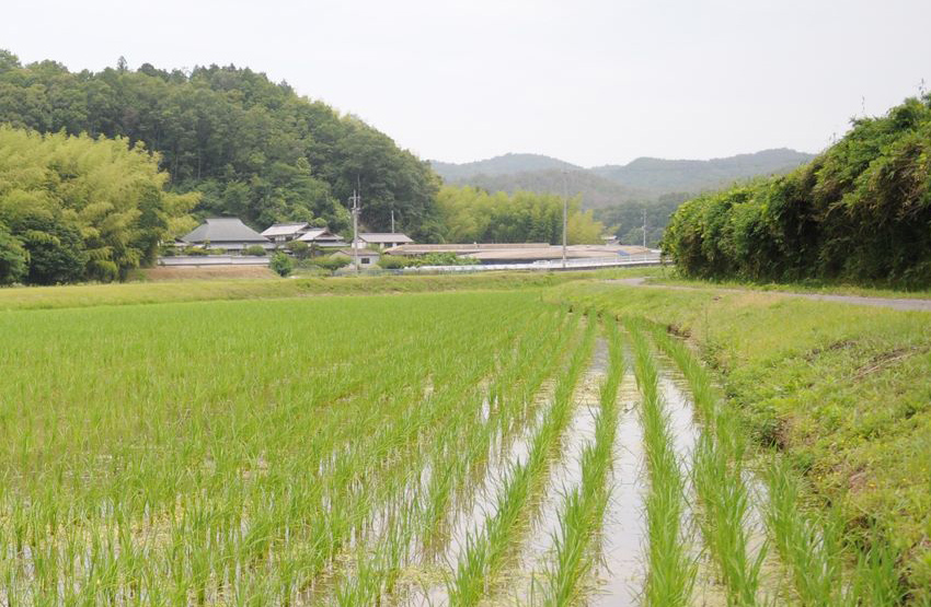 利守酒造(岡山県赤磐市)